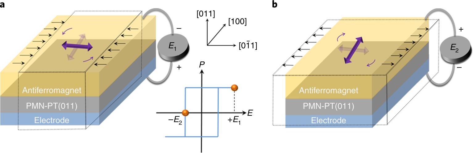 Electric field control of Néel spin–orbit torque in an ... on