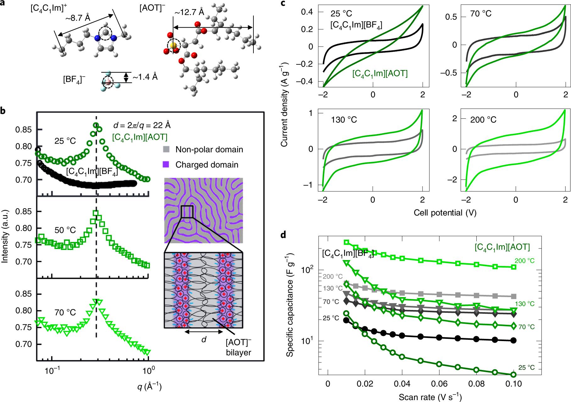 Self-assembled nanostructures in ionic liquids facilitate