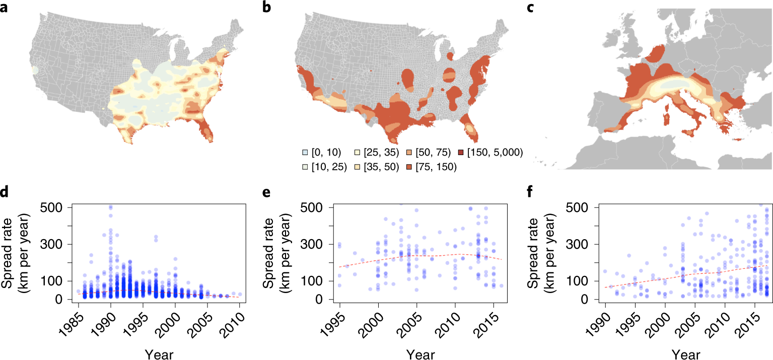 Past and future spread of the arbovirus vectors Aedes aegypti and