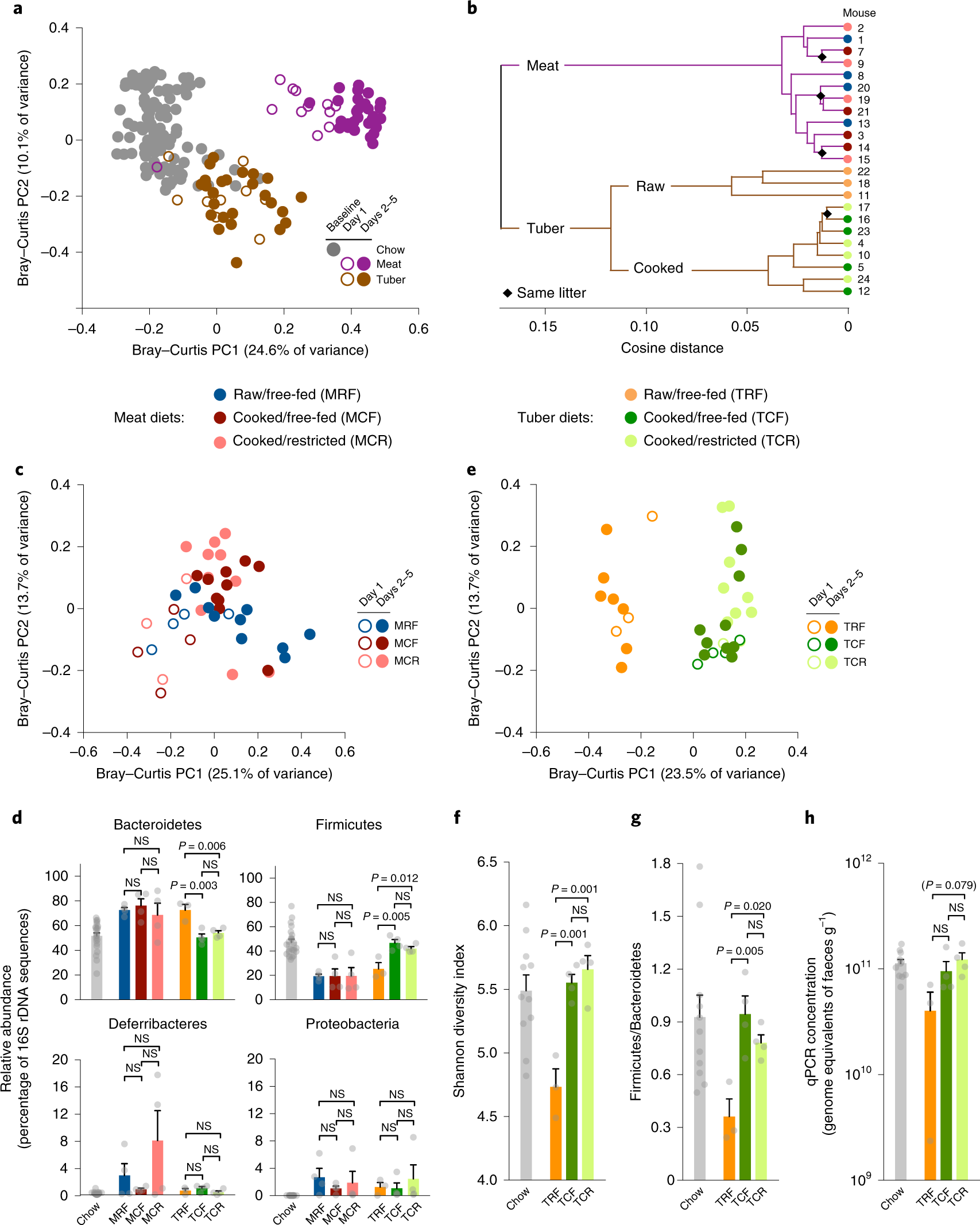 Cooking shapes the structure and function of the gut microbiome