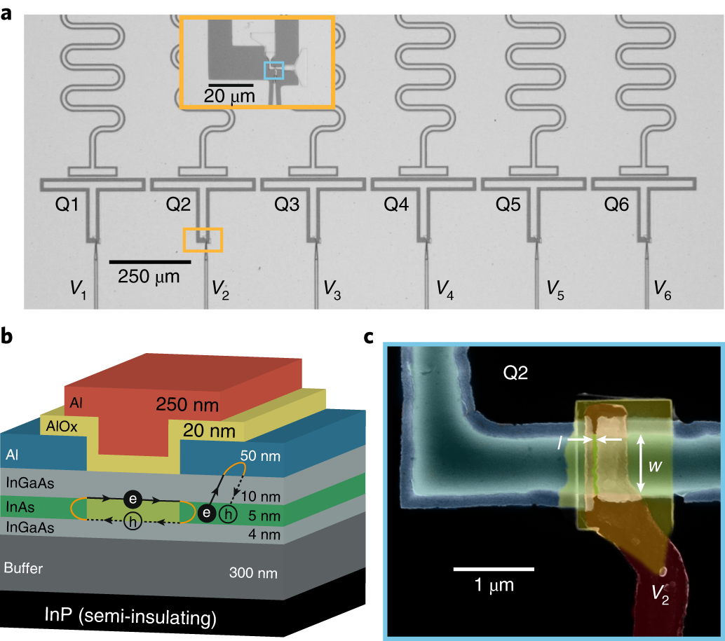 Superconducting gatemon qubit based on a proximitized two ... on