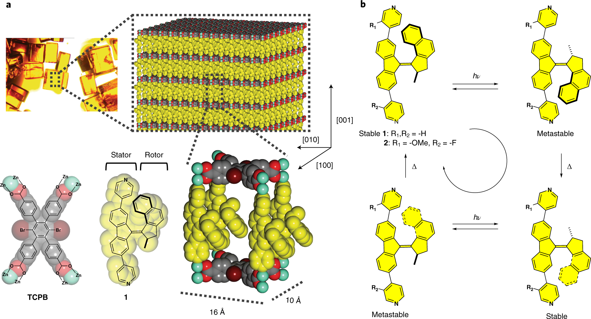 Unidirectional rotary motion in a metal–organic framework | Nature