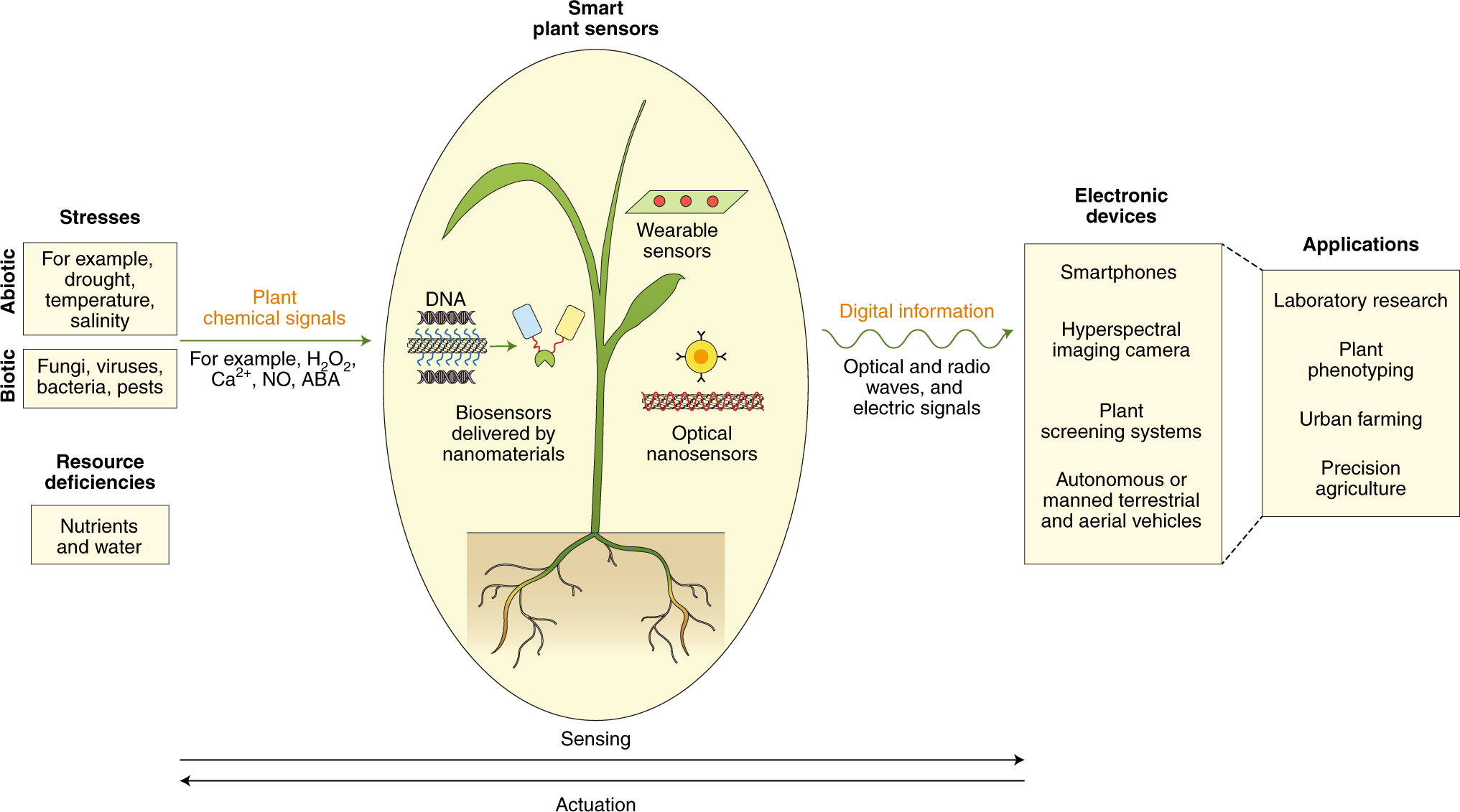 Nanobiotechnology approaches for engineering smart plant