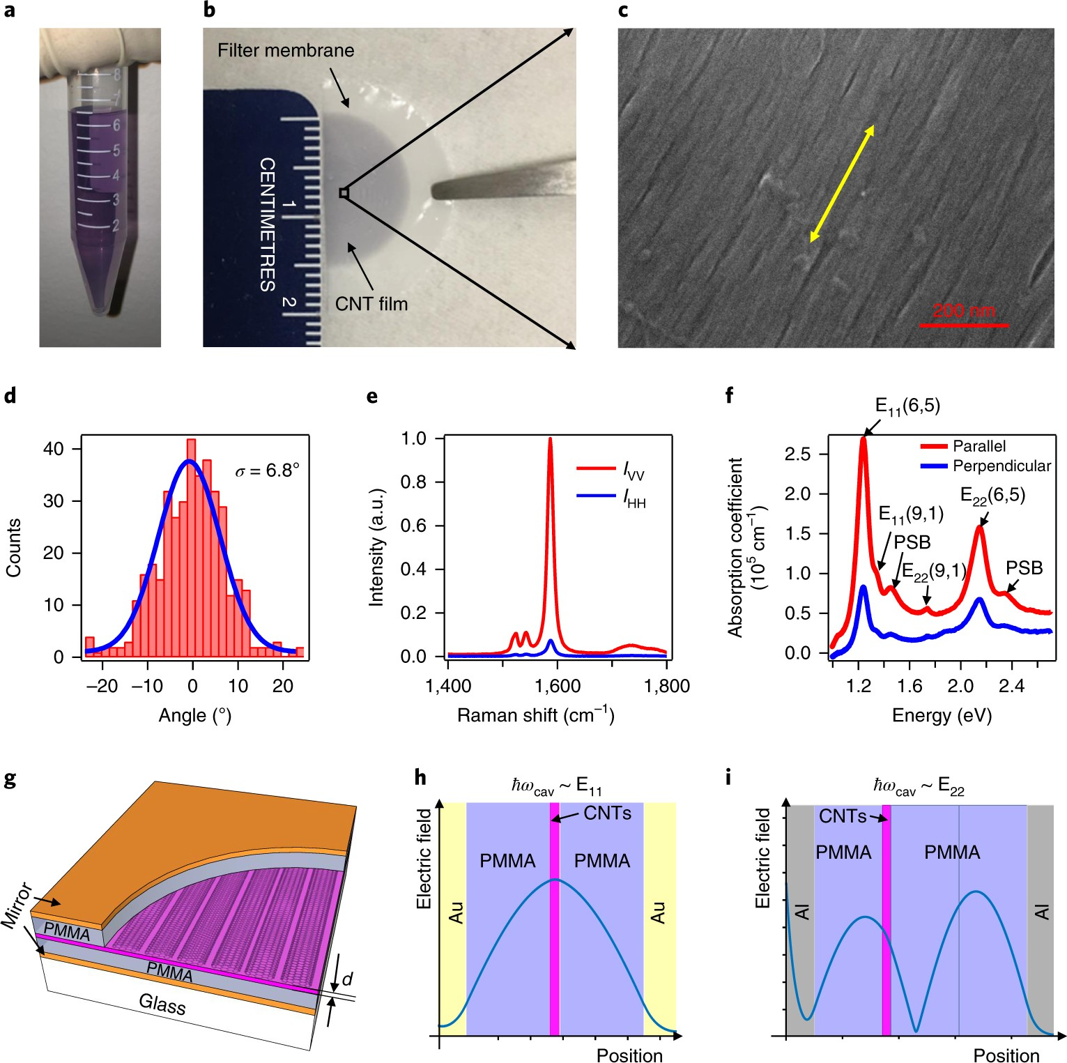 Continuous Transition Between Weak And Ultrastrong Coupling Through Wiring Diagram Also Membrane Vacuum Pump On Use Case Gas Exceptional Points In Carbon Nanotube Microcavity Excitonpolaritons Nature Photonics