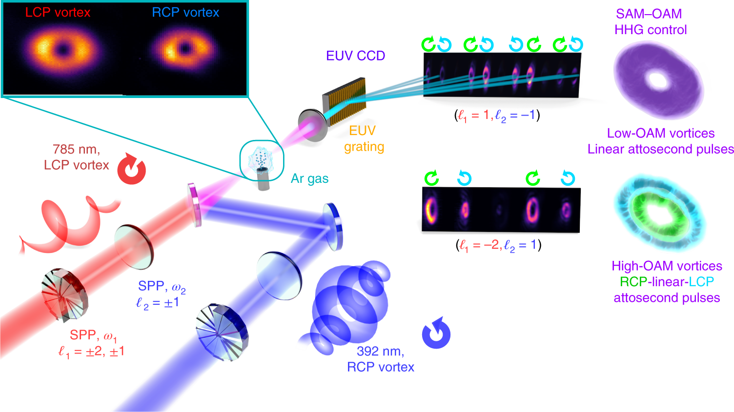 Controlling the polarization and vortex charge of attosecond high-harmonic  beams via simultaneous spin–orbit momentum conservation | Nature Photonics