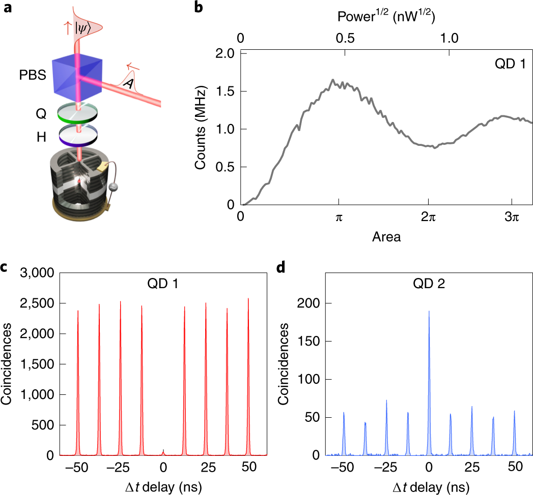Generation of non-classical light in a photon-number superposition