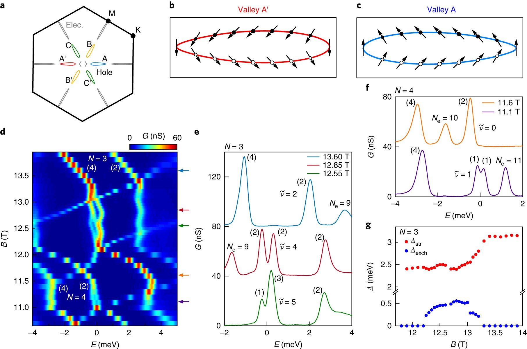 Ferroelectric quantum Hall phase revealed by visualizing