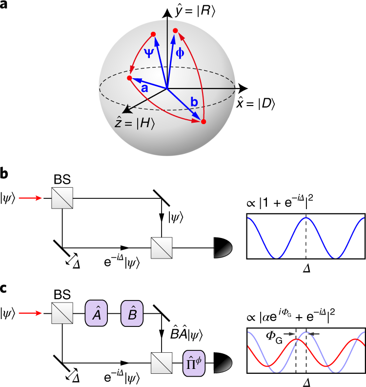 Emergence of the geometric phase from quantum measurement