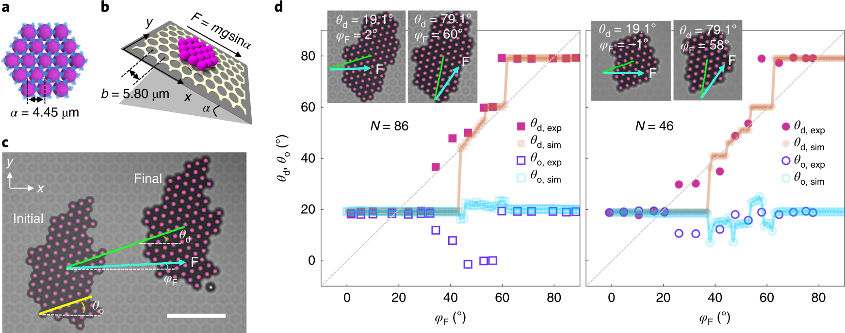 Orientational and directional locking of colloidal clusters driven