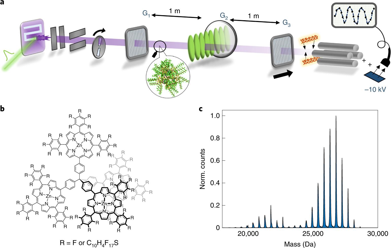 Quantum superposition of molecules beyond 25 kDa