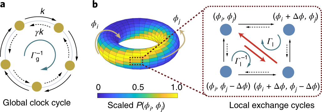 The energy cost and optimal design for synchronization of coupled mole