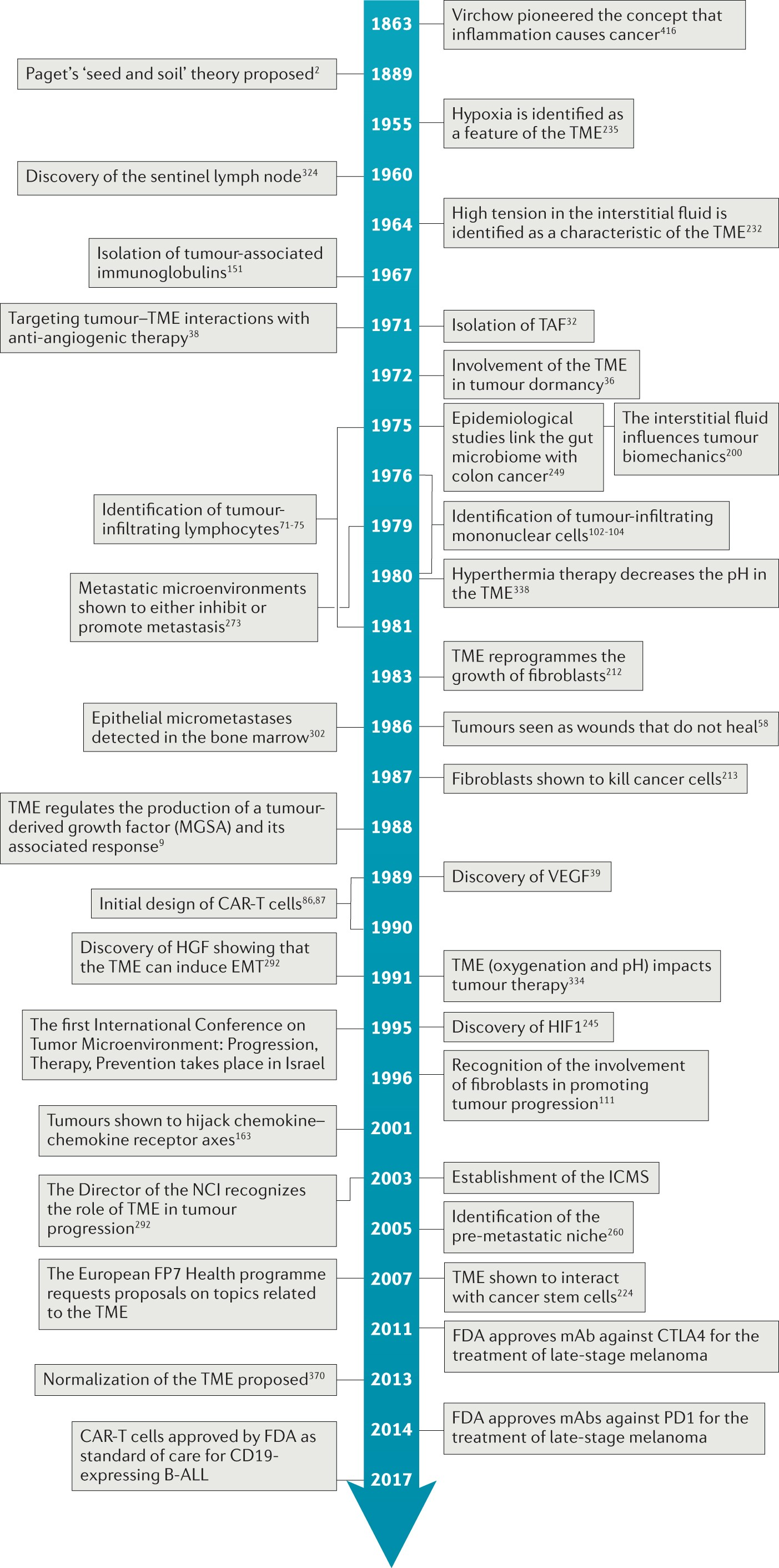 A history of exploring cancer in context | Nature Reviews Cancer