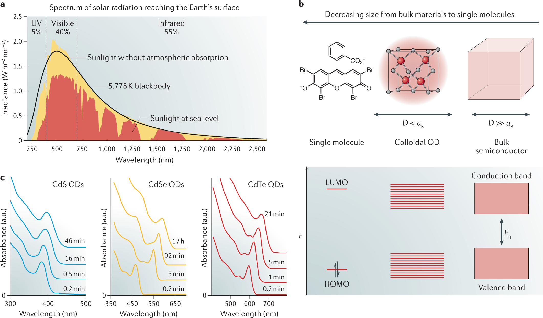 Semiconducting quantum dots for artificial photosynthesis