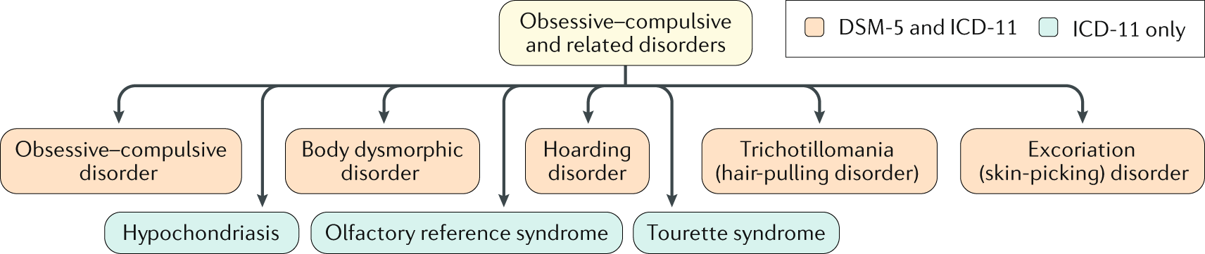 Obsessive–compulsive disorder | Nature Reviews Disease Primers