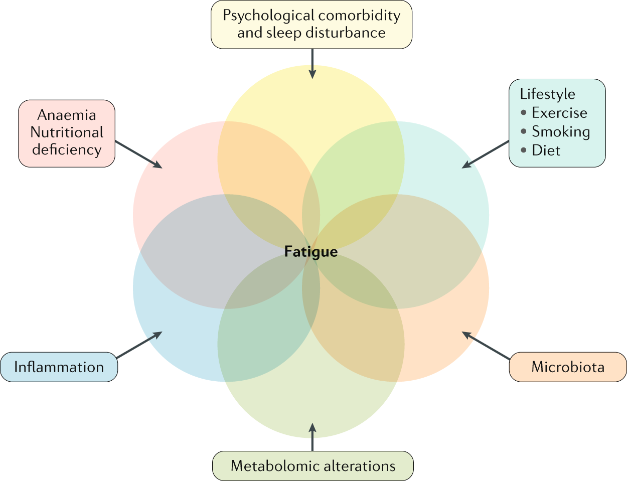 Fatigue in IBD: epidemiology, pathophysiology and management