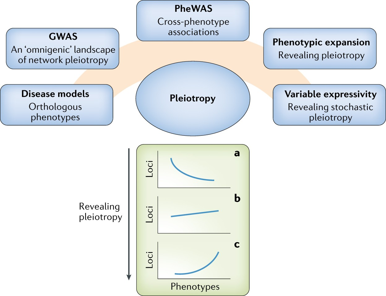 41576_2018_5_Fig1_HTML high throughput mouse phenomics for characterizing mammalian gene