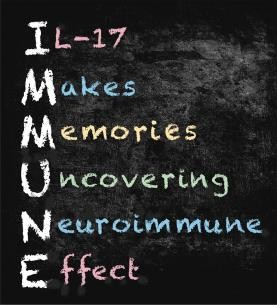 IL-17: an immune mnemonic