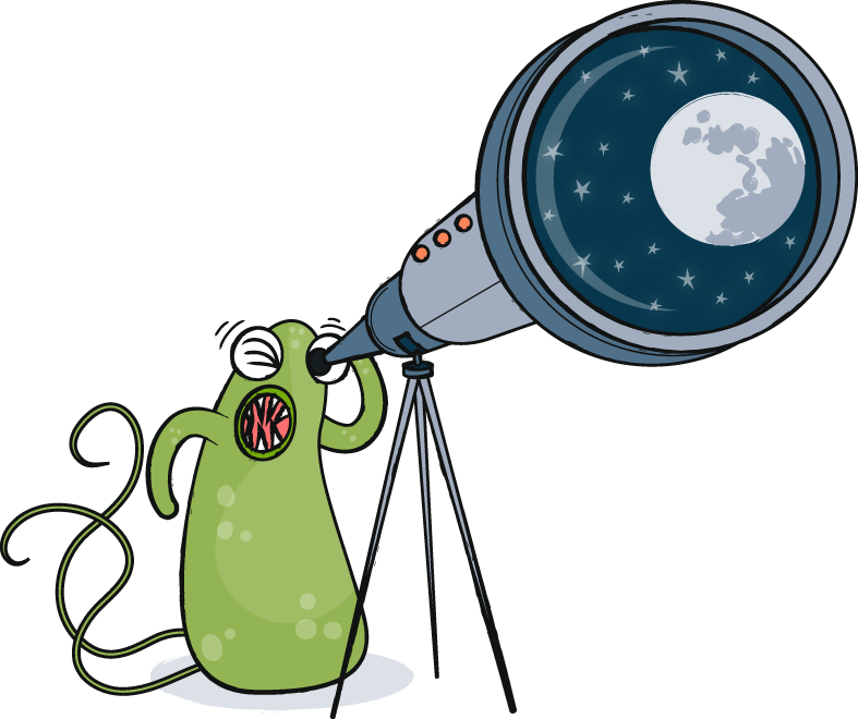Genome gazing in ammonia-oxidizing archaea