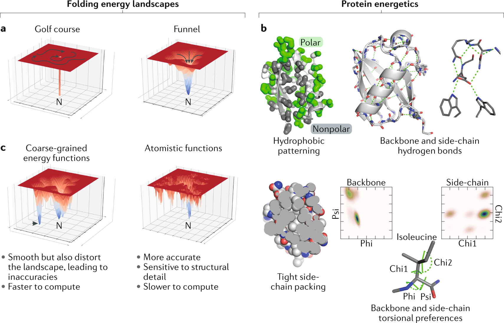 Advances in protein structure prediction and design | Nature