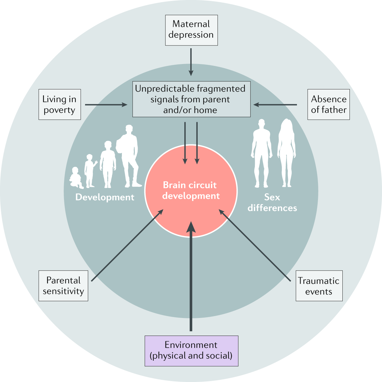 Early-life adversity and neurological disease: age-old questions and n
