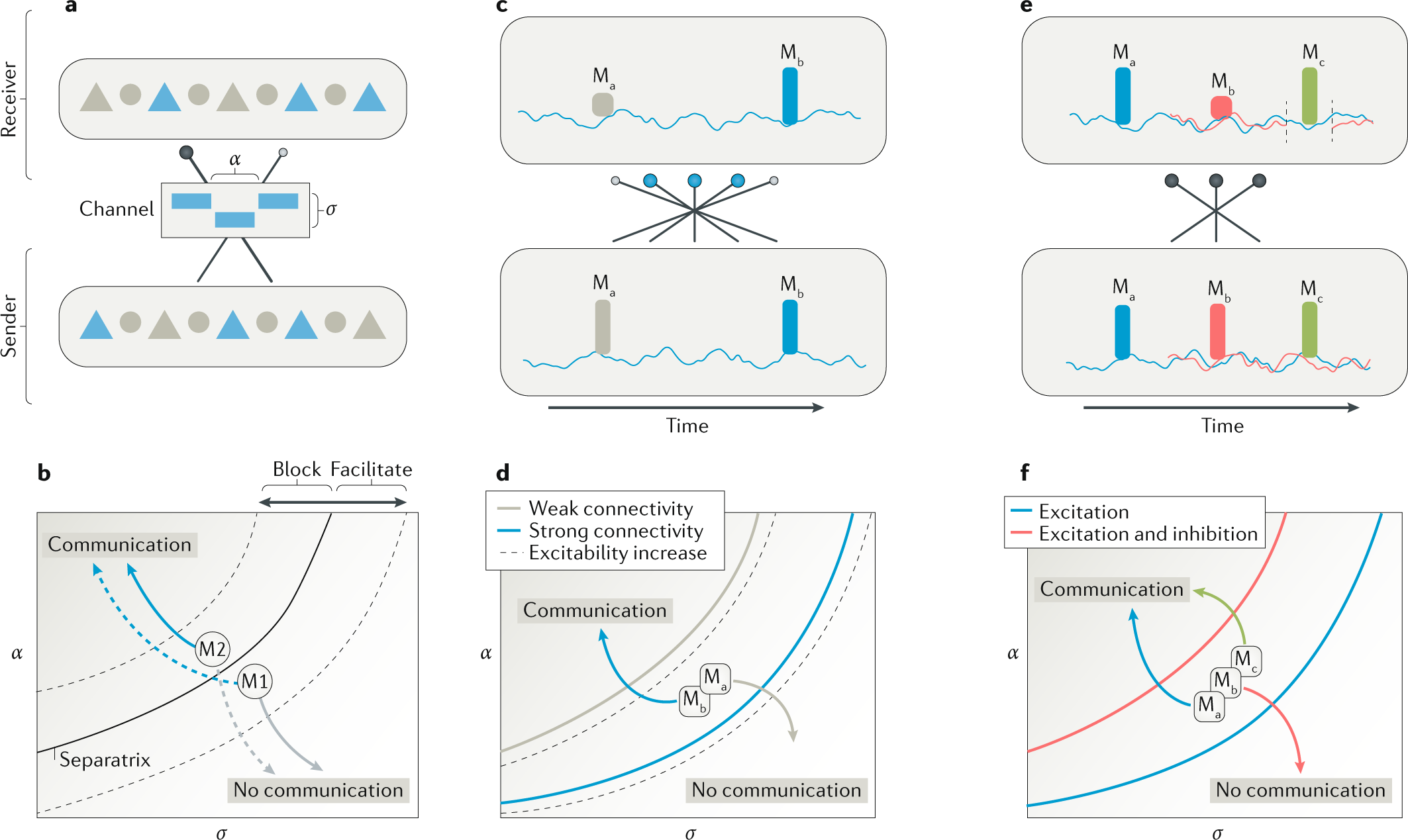 Portraits of communication in neuronal networks | Nature