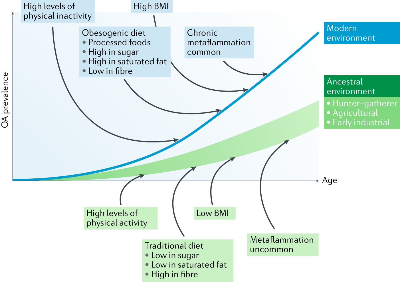 Modern-day environmental factors in the pathogenesis of