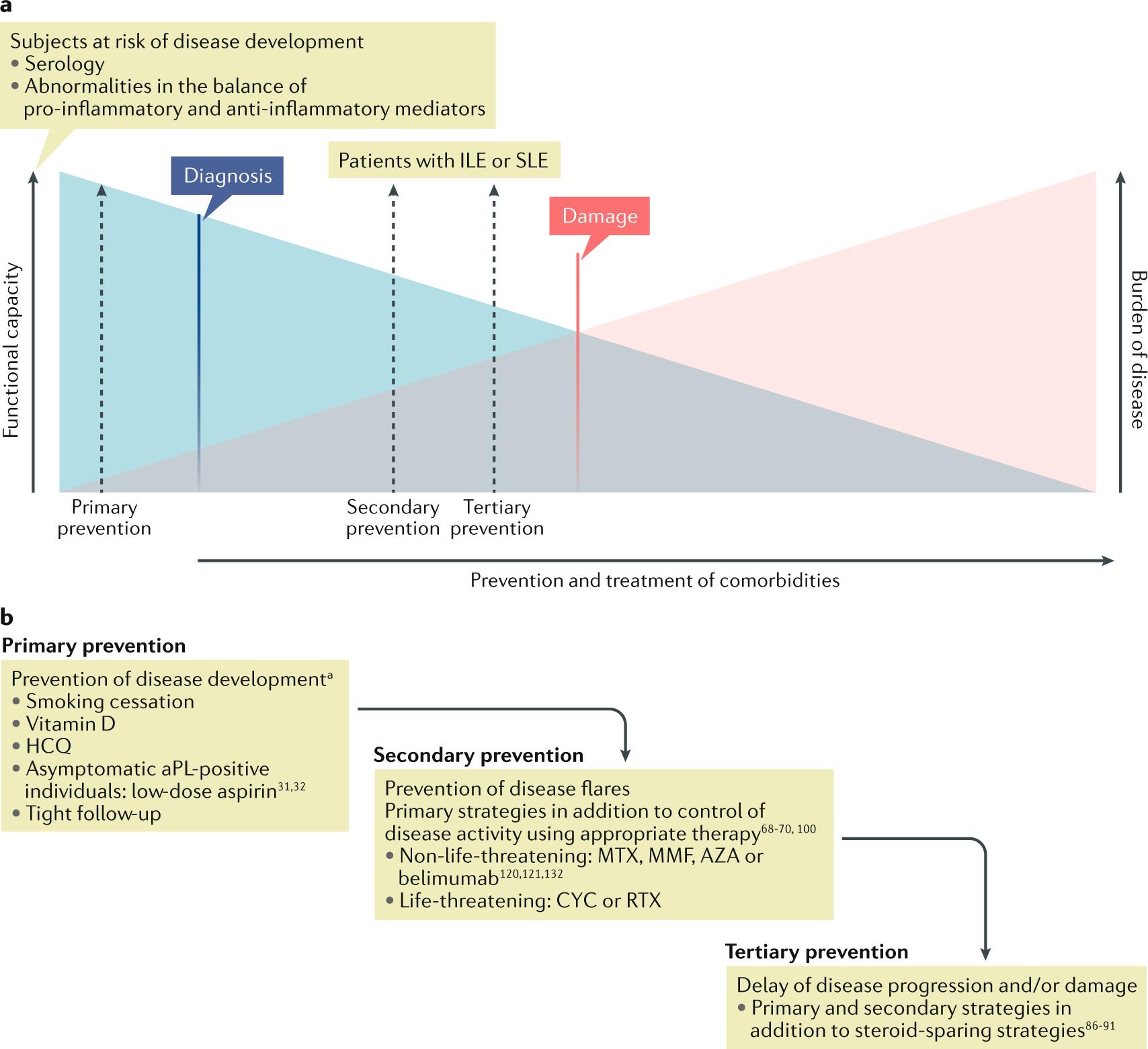 New therapeutic strategies in systemic lupus erythematosus