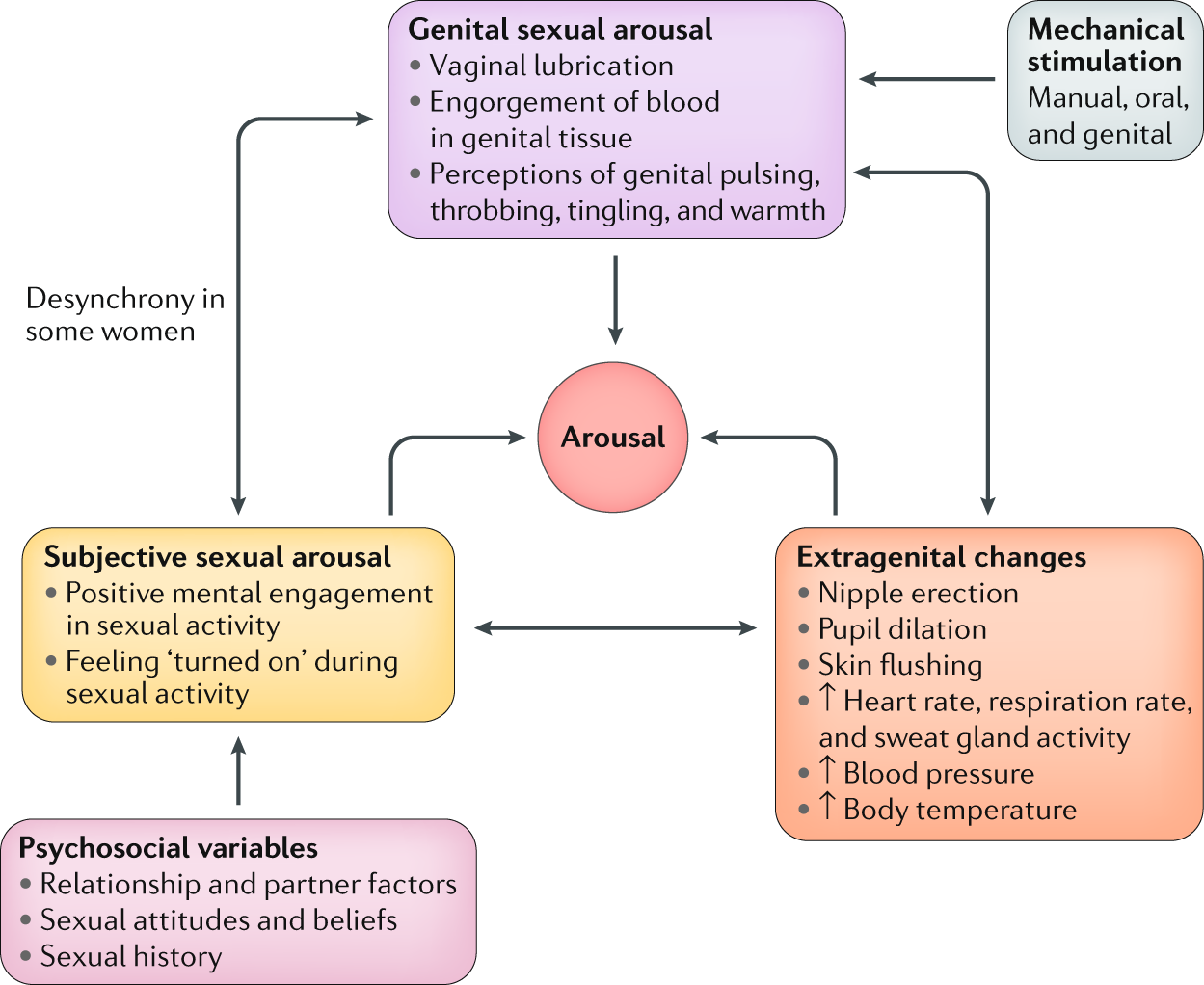 Understanding sexual arousal and subjective–genital arousal desynchrony in  women | Nature Reviews Urology