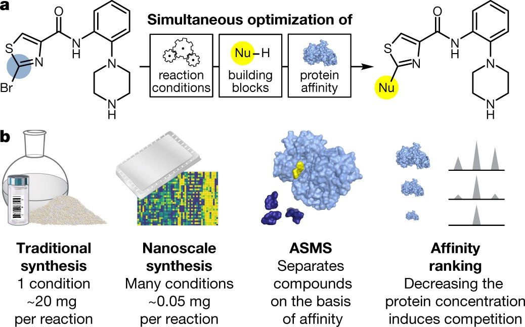 Nanoscale synthesis and affinity ranking | Nature