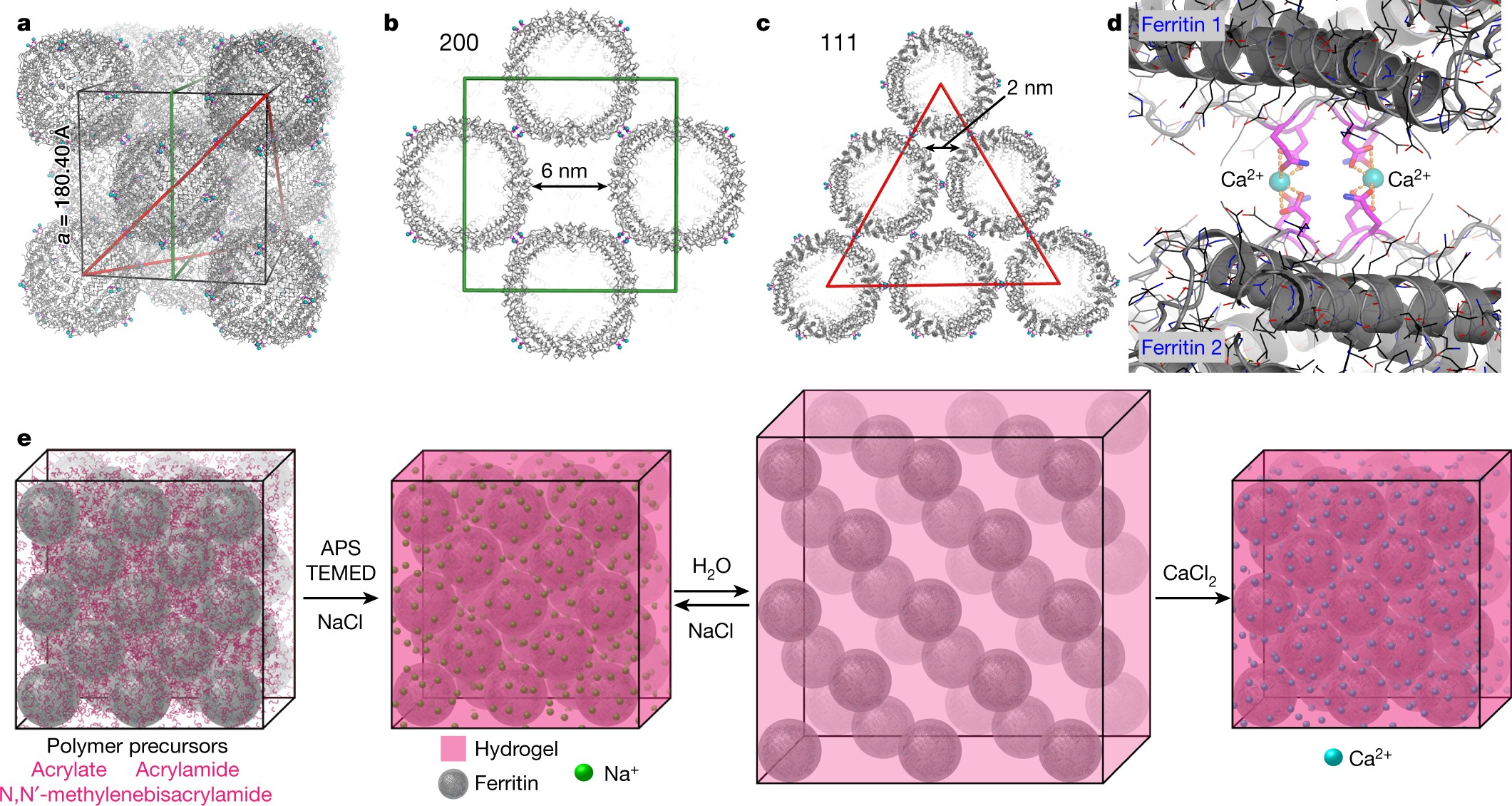 Hyperexpandable, self-healing macromolecular crystals with