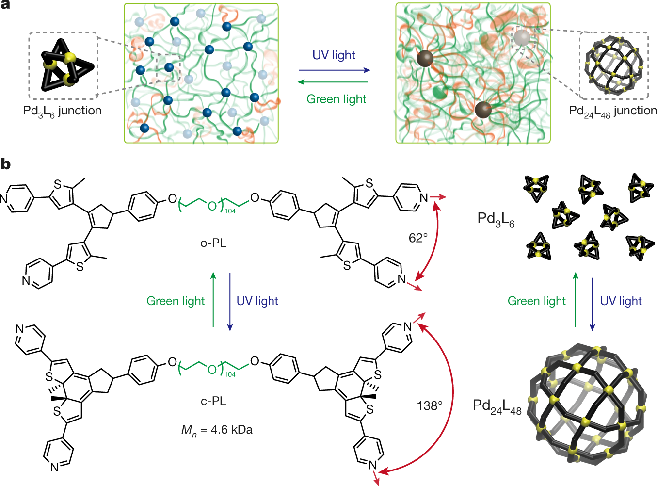 Photoswitching Topology In Polymer Networks With Metalorganic Cages
