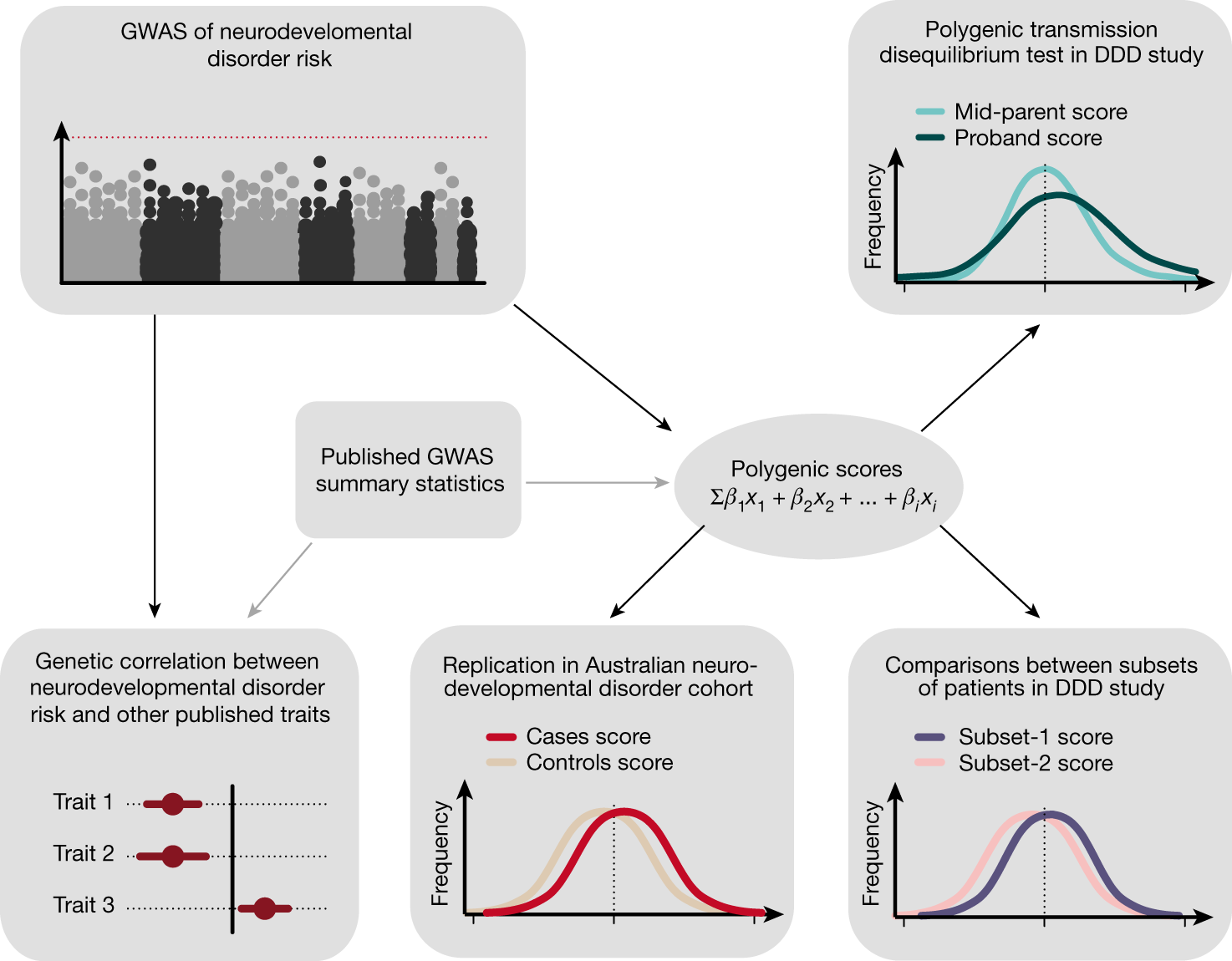Autism Not Only Neurodevelopmental >> Common Genetic Variants Contribute To Risk Of Rare Severe