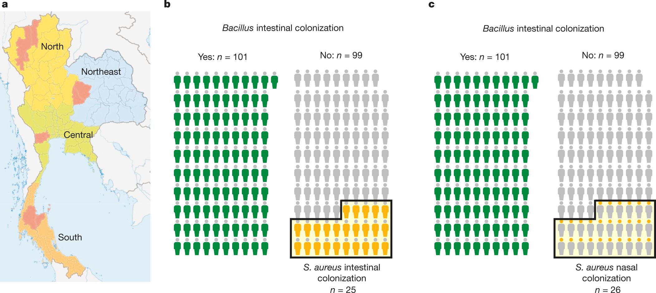 Pathogen Elimination By Probiotic Bacillus Via Signalling