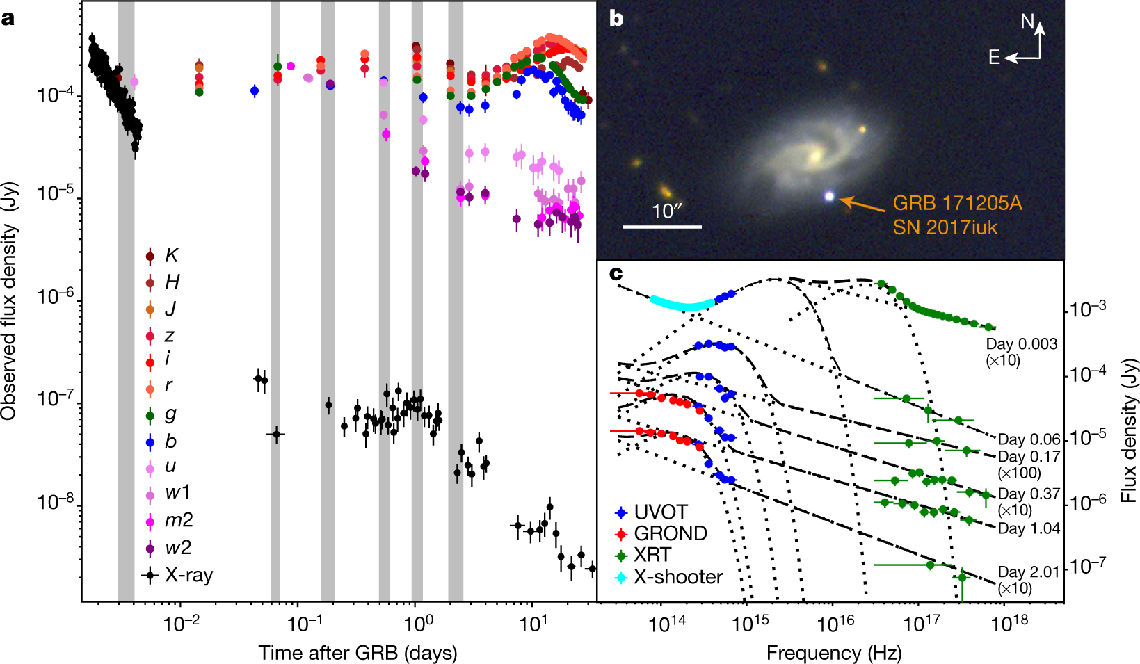 Signatures of a jet cocoon in early spectra of a supernova