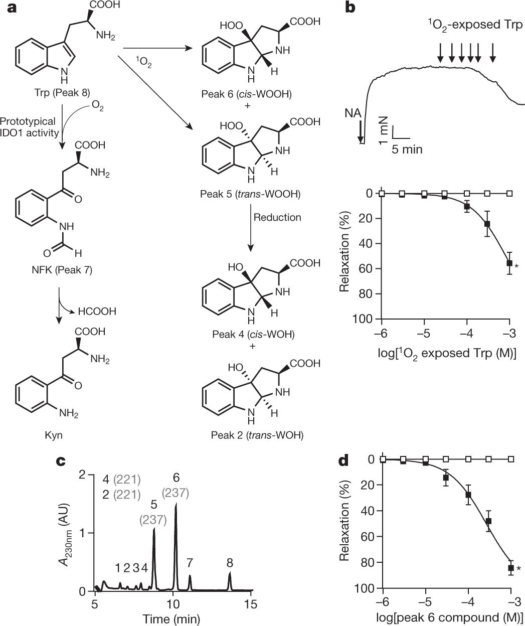 Singlet molecular oxygen regulates vascular tone and blood