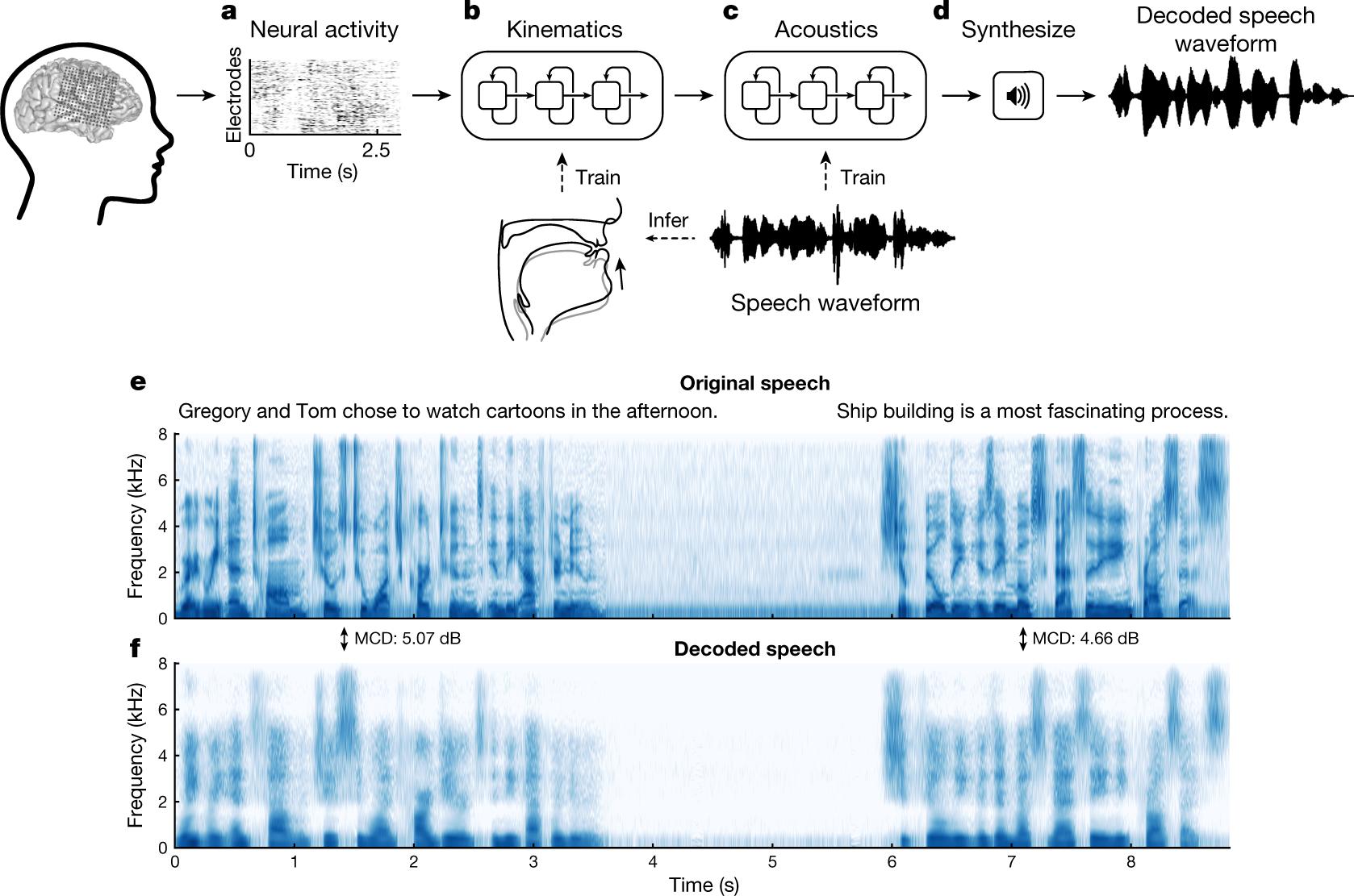 56451d5b0d Speech synthesis from neural decoding of spoken sentences
