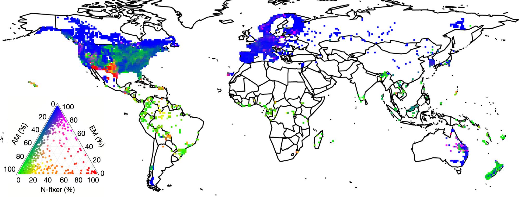 Global Biogeography