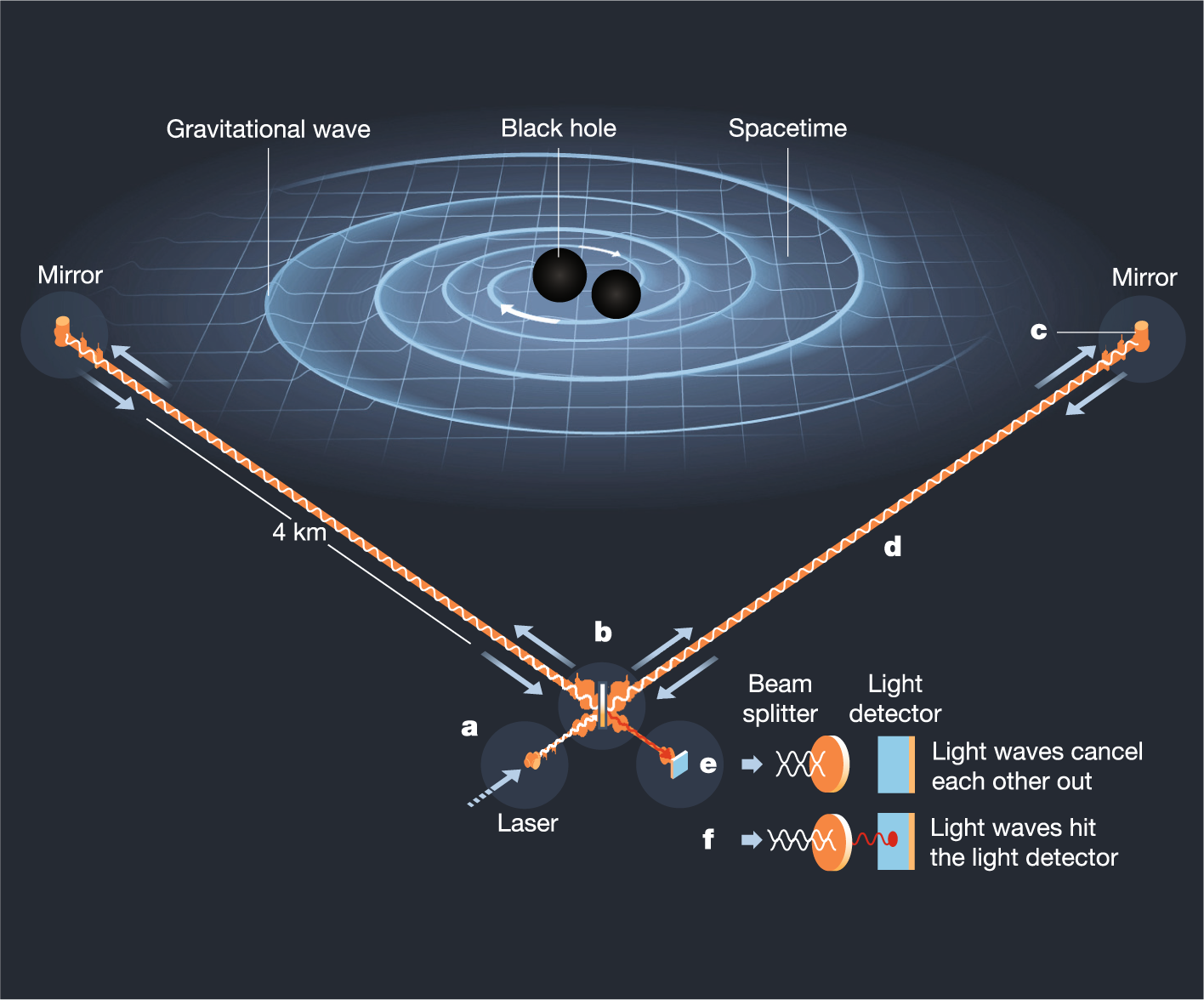 The New Frontier Of Gravitational Waves Nature