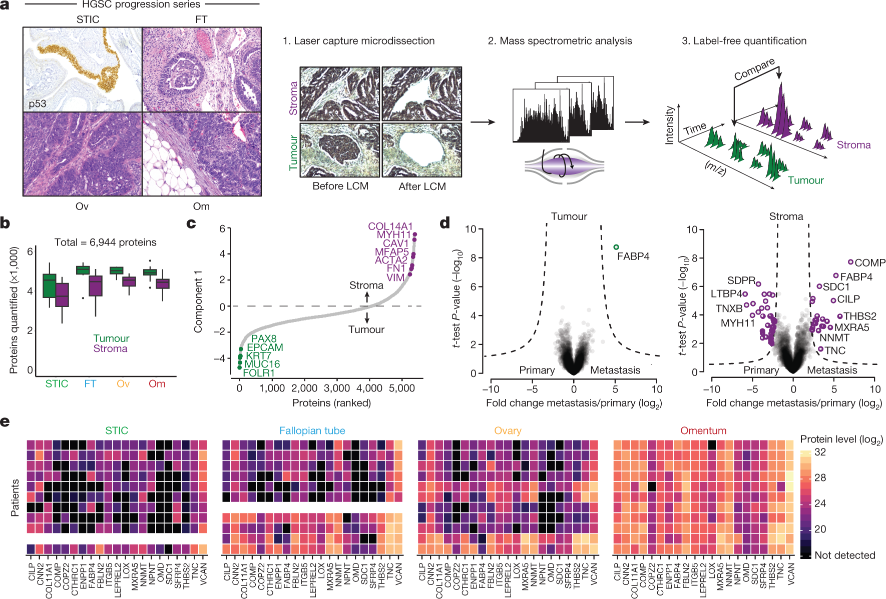 Proteomics reveals NNMT as a master metabolic regulator of