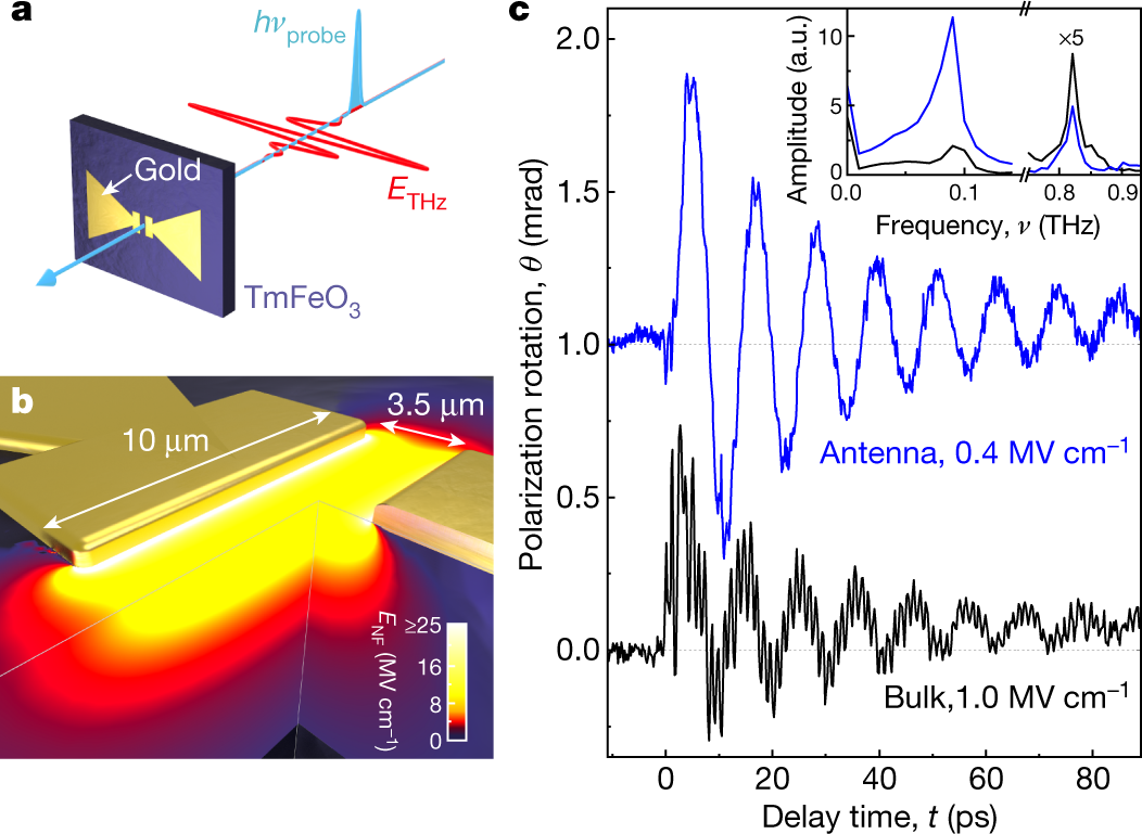 Temporal and spectral fingerprints of ultrafast all-coherent spin
