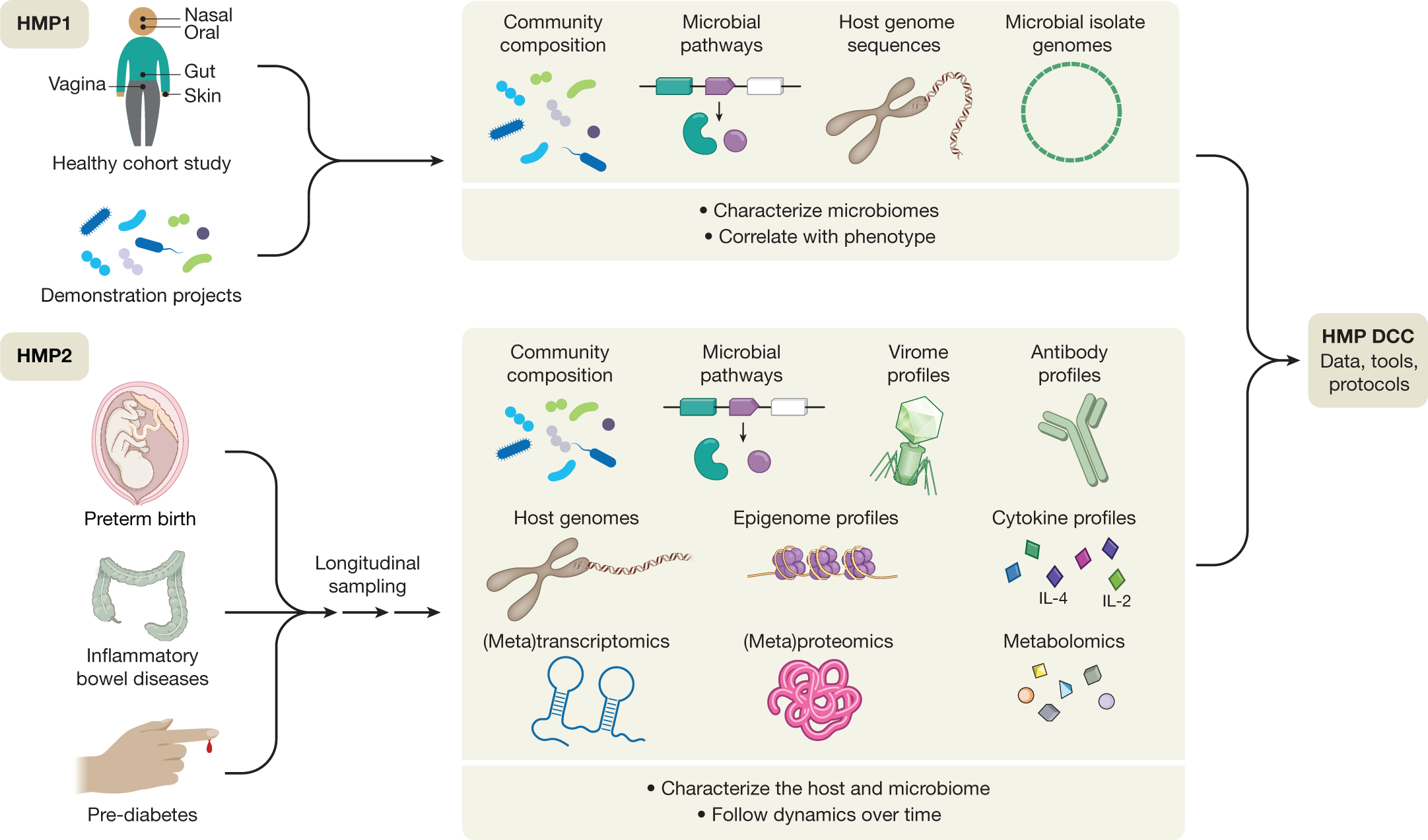 New Consortium May Create Projects >> The Integrative Human Microbiome Project Nature