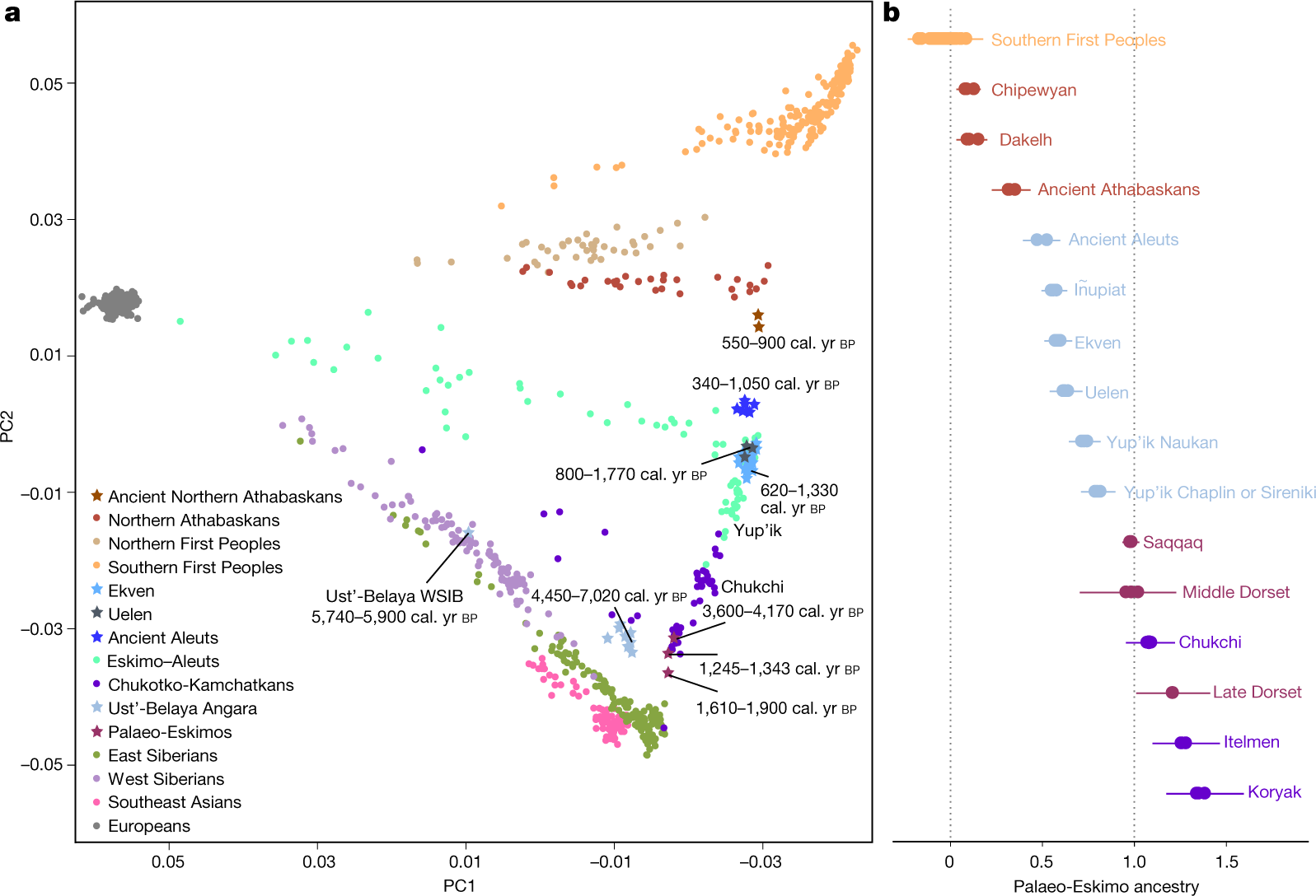 Palaeo-Eskimo genetic ancestry and the peopling of Chukotka and