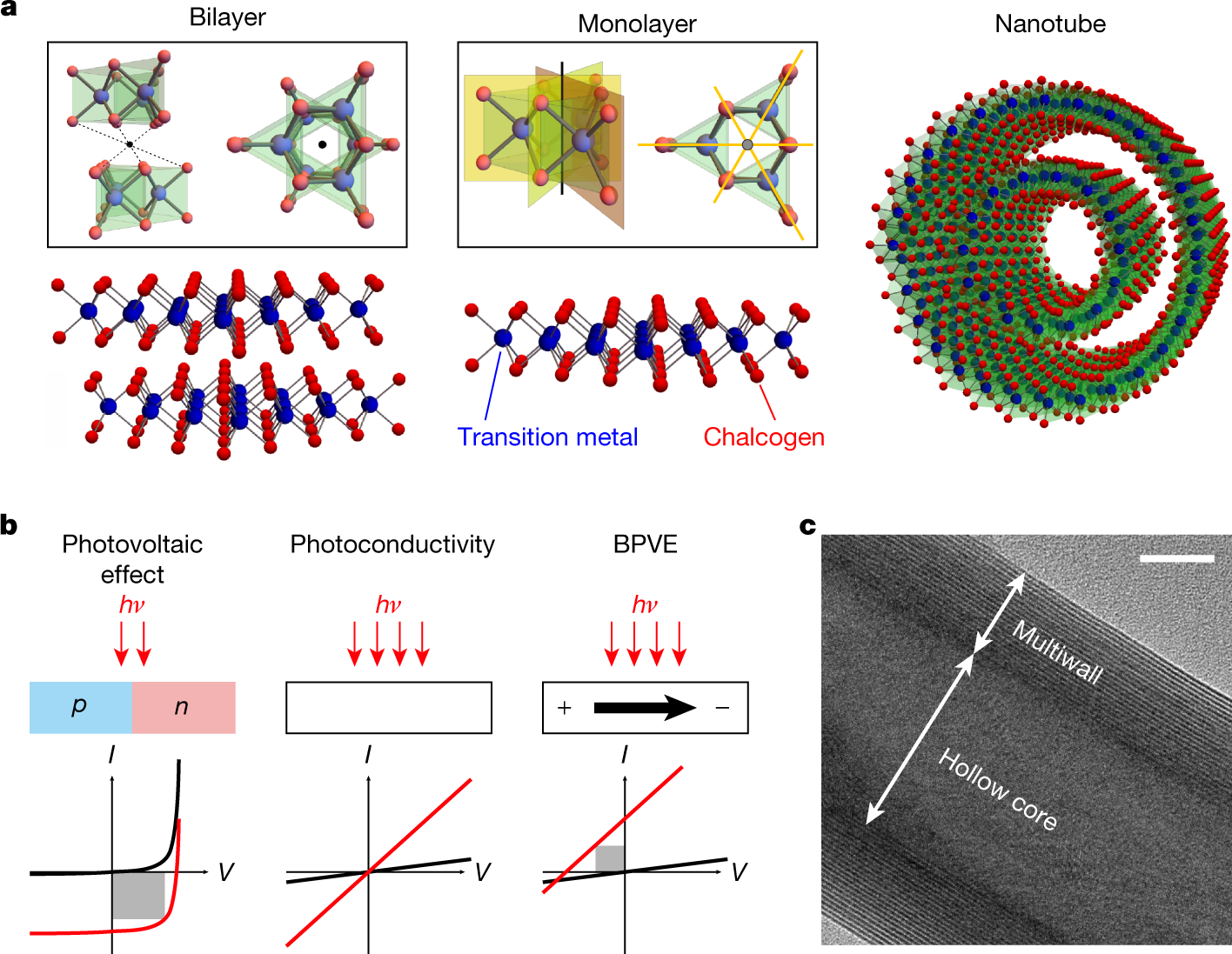 Enhanced intrinsic photovoltaic effect in tungsten disulfide nanotubes