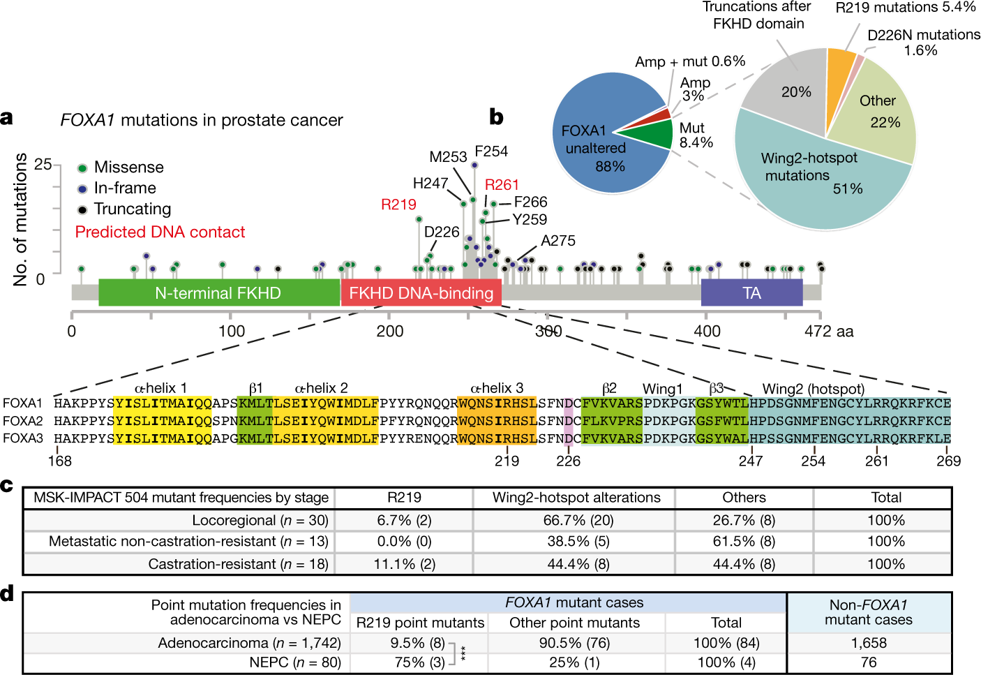FOXA1 mutations alter pioneering activity, differentiation
