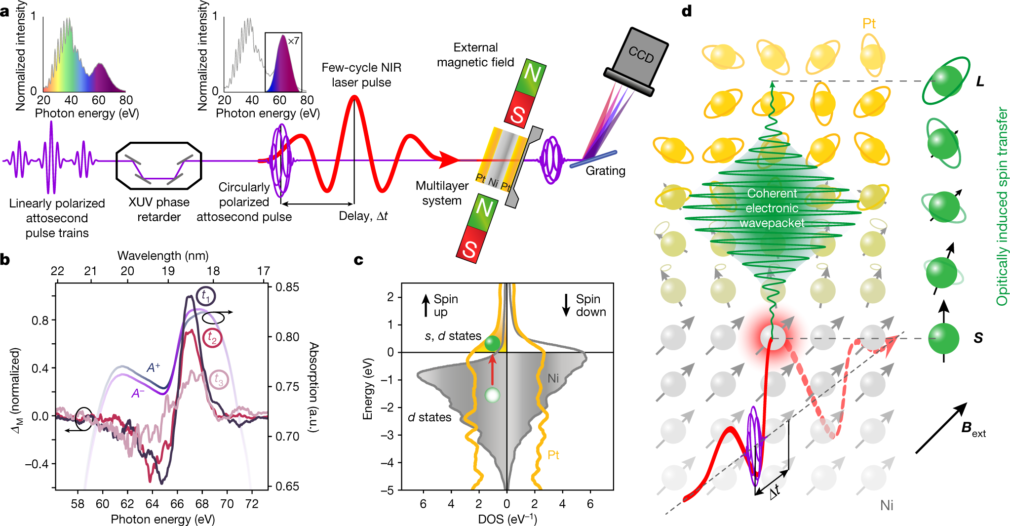 Light-wave dynamic control of magnetism | Nature
