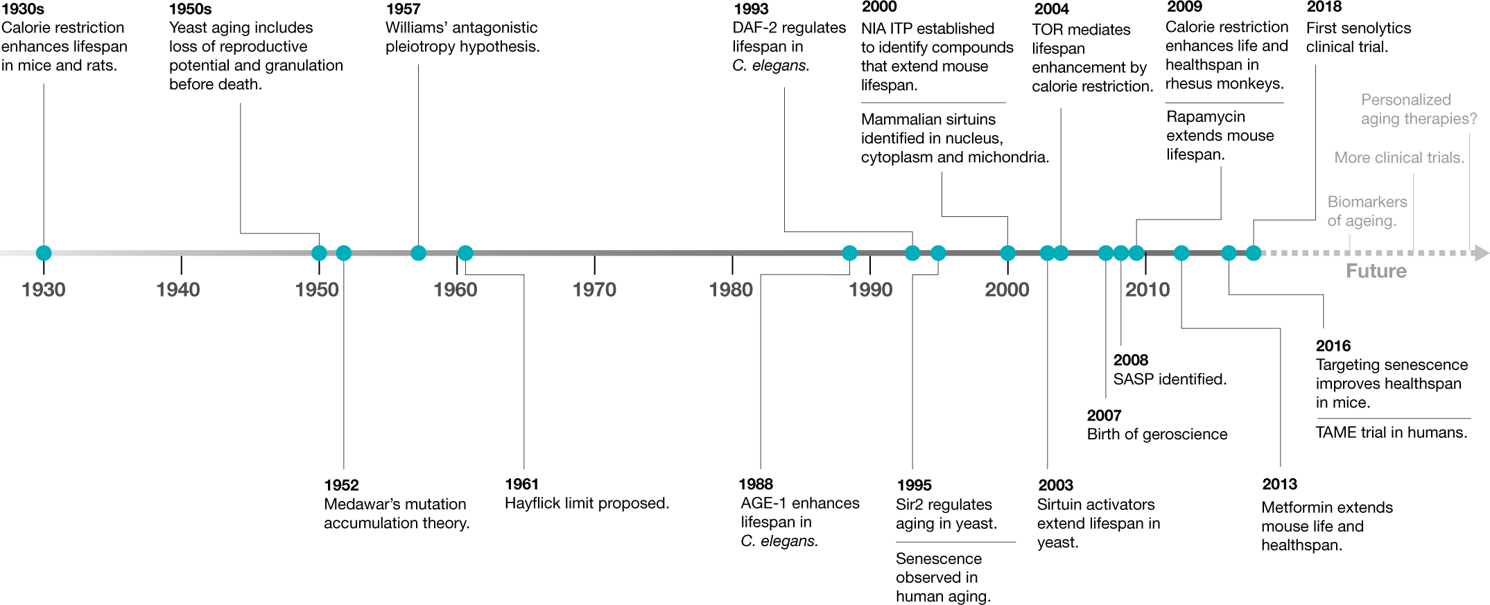 From discoveries in ageing research to therapeutics for healthy ageing