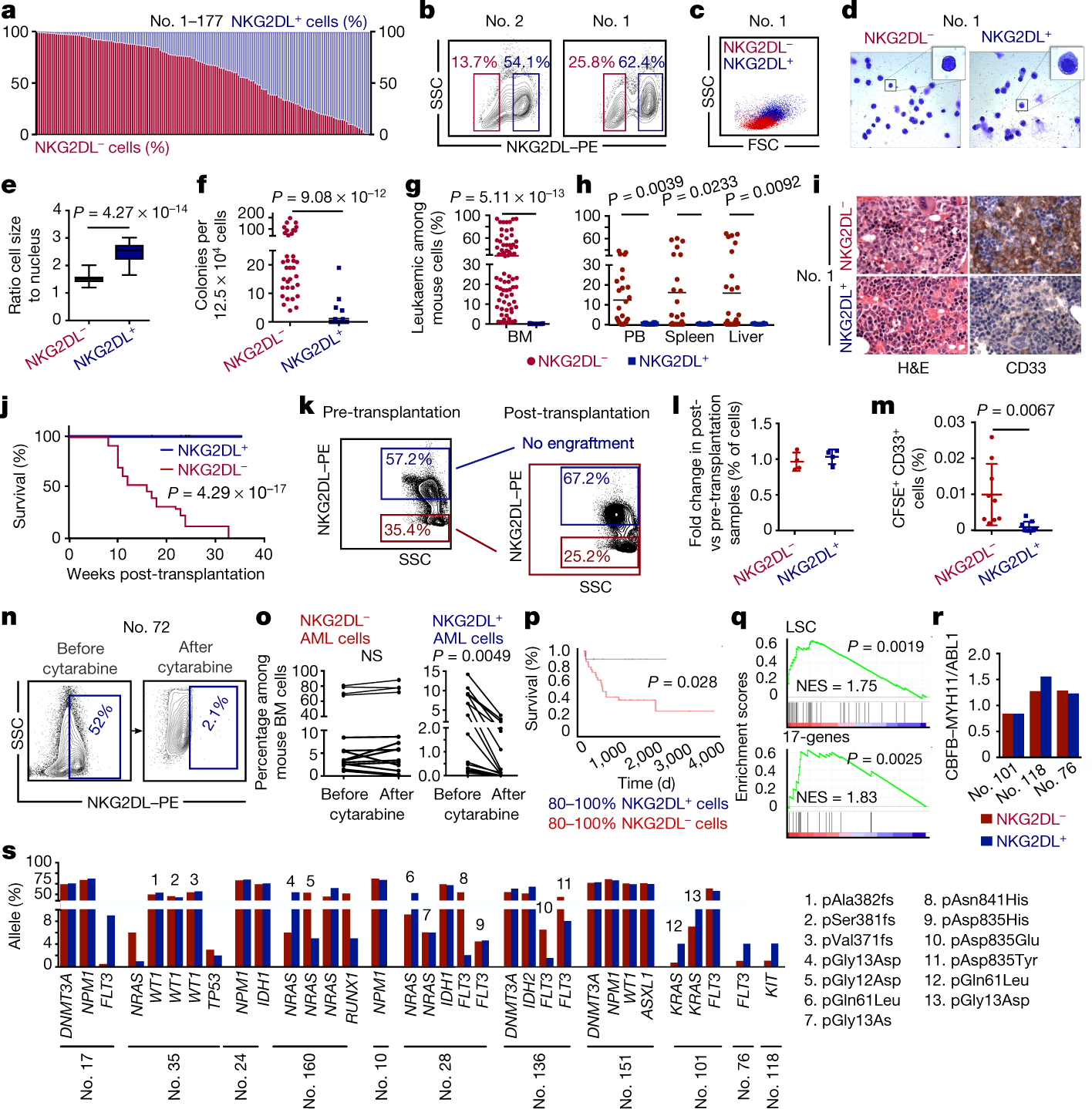 Absence of NKG2D ligands defines leukaemia stem cells and mediates the