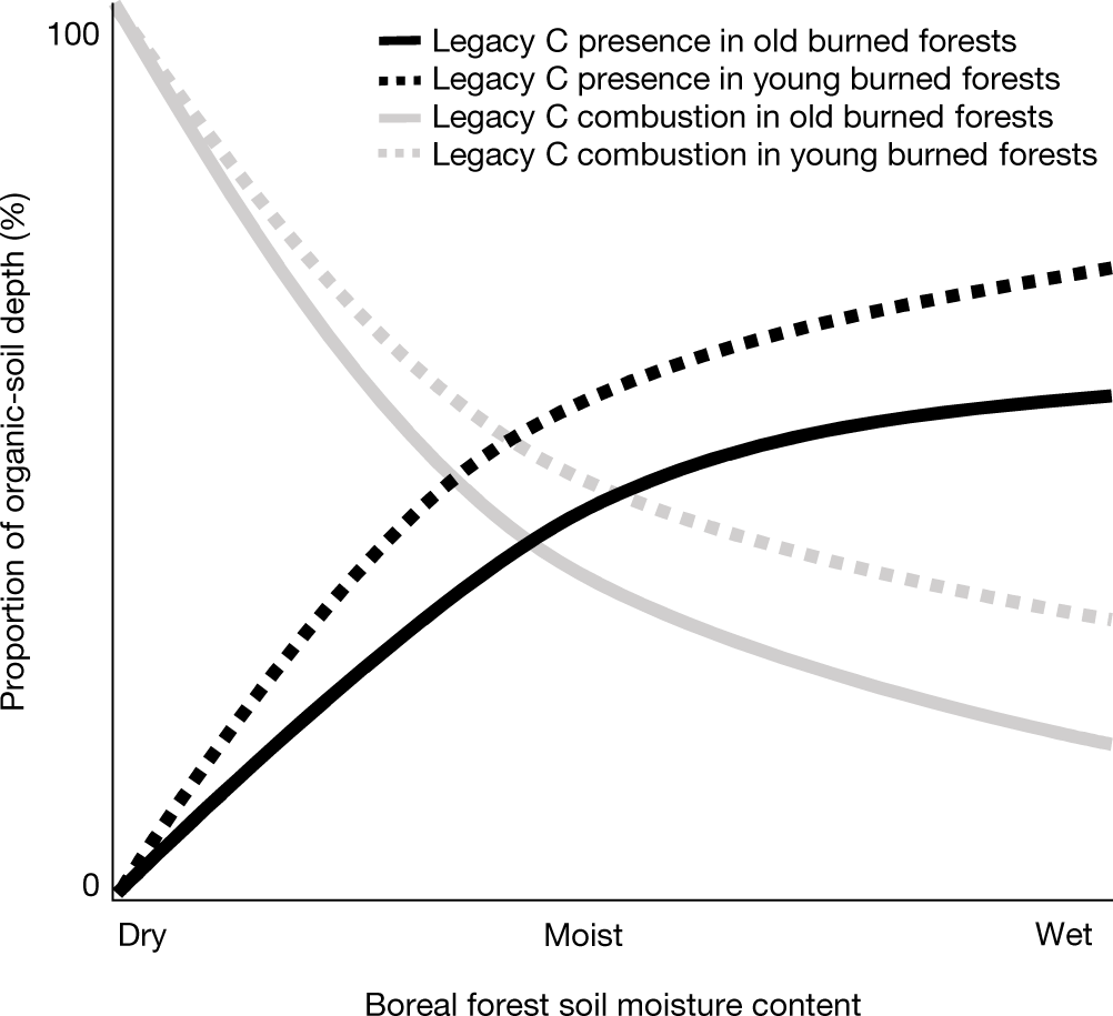 Increasing wildfires threaten historic carbon sink of boreal forest so