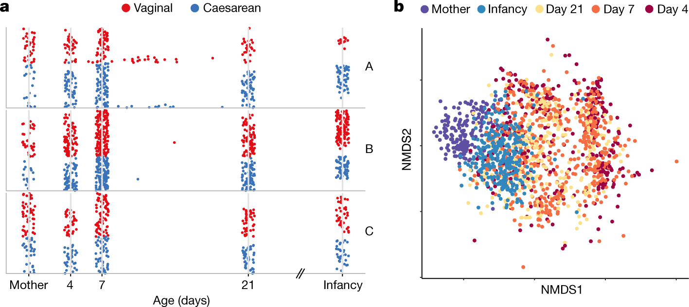 Stunted microbiota and opportunistic pathogen colonization in caesarea
