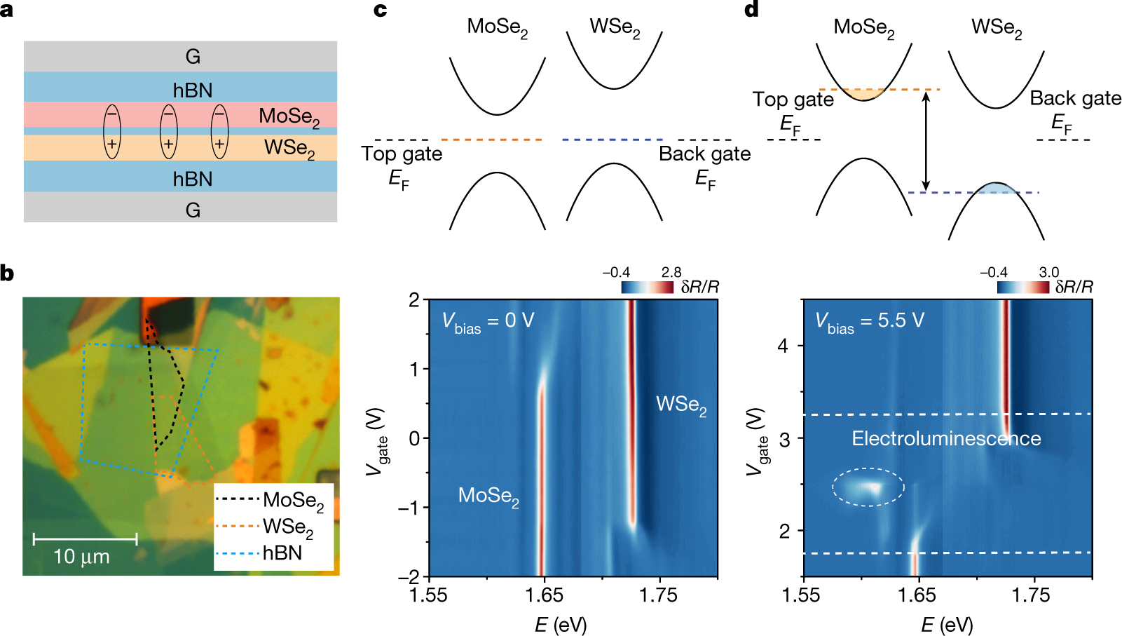 Evidence of high-temperature exciton condensation in two-dimensional a